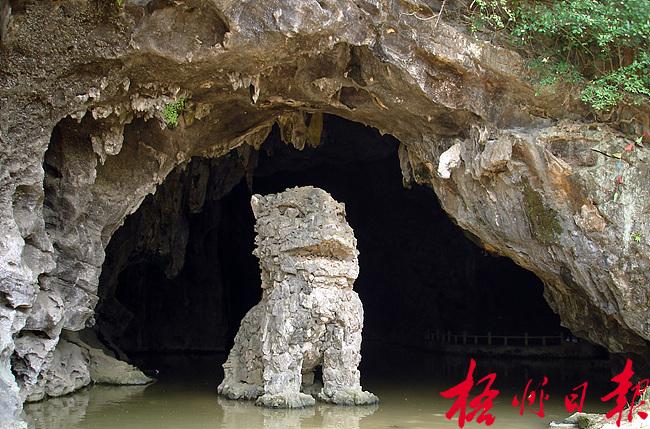 龙岩通天洞风景区内的石狮.