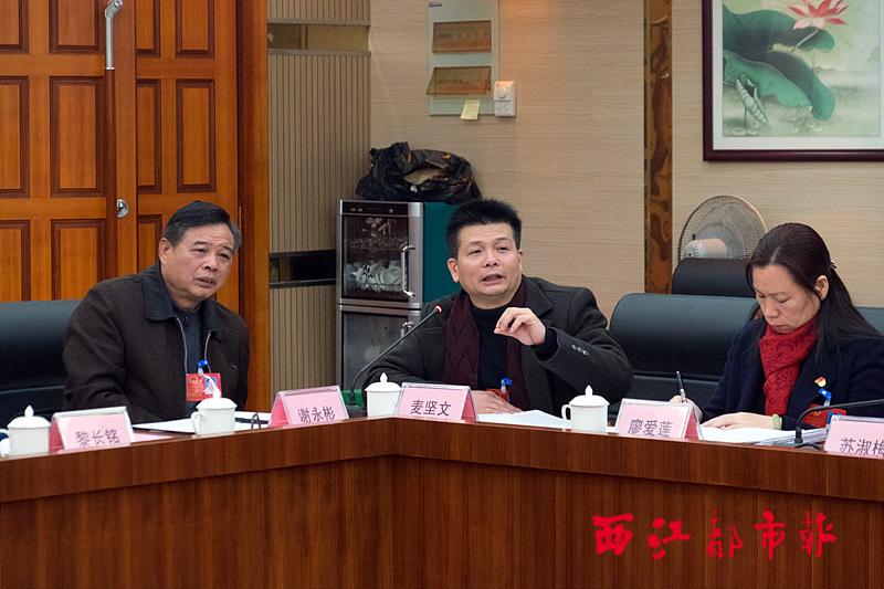 各县(市)代表为推进新型城镇化建言献策