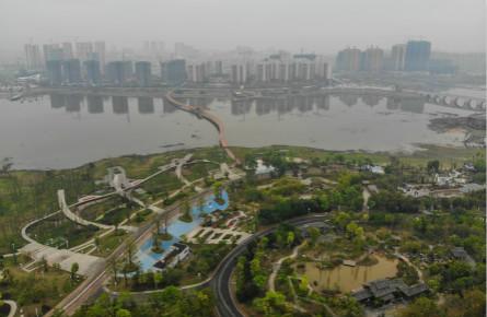 龙圩区开展国土绿化提质三年行动