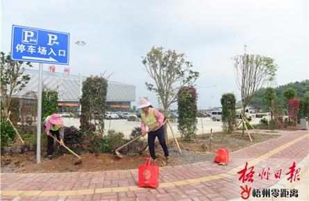 绿化美化机场环境