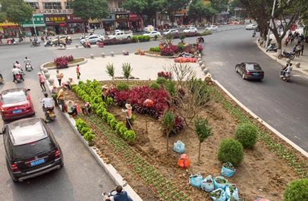 绿化渠化岛