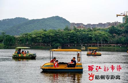 市民游客泛舟玫瑰湖