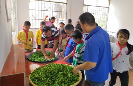 学习制茶传承工艺