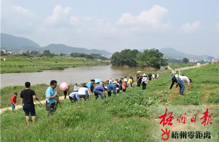 清理农作物保护水源地