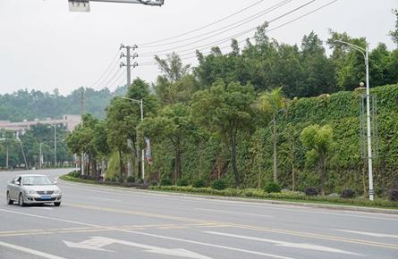 梧州高新区工业大道提升改造工程月底完工