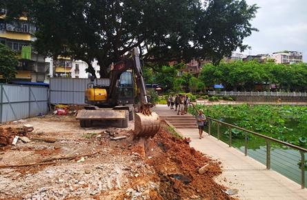 修建荷花池步道