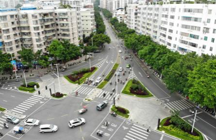 道路绿意常驻