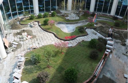 苍海湿地公园建设雨水花园