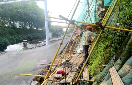 整治地灾 增添绿化