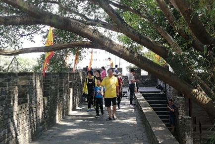 梧州市已接待游客超百万人次