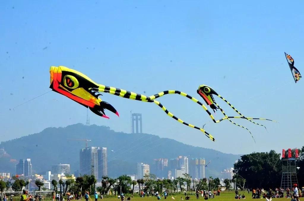 171支队伍参与风筝大赛角逐 参赛队伍为历年之最