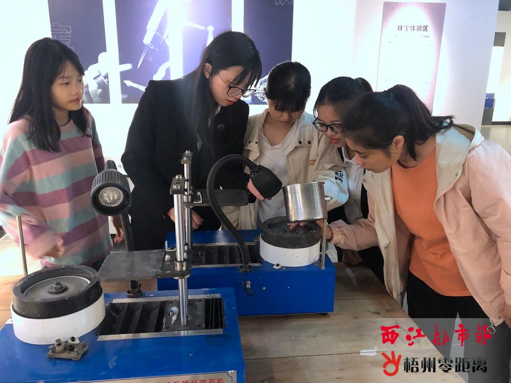 西江商贸文化博物馆和宝石文化博物馆迎来公众开放日