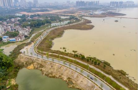 湿地公园生态环境优良
