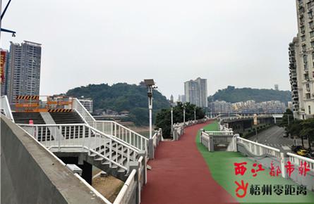 河东防洪堤桂江段实施堤面提升改造工程