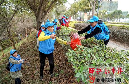志愿队伍齐动手 干干净净迎新春