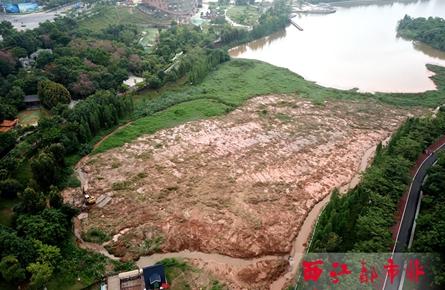 玫瑰湖公园湖面堆积大量淤泥