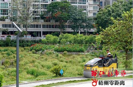 进一步提升公园景观