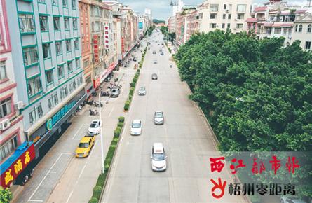 改善城区 交通环境