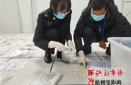 梧州海关向林业部门移交一批涉案象牙制品