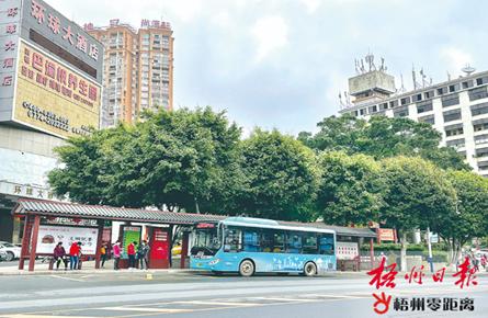 公共交通服务优化