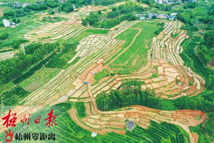 耕地提质改造