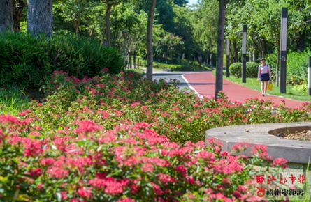 玫瑰湖公园鲜花簇拥