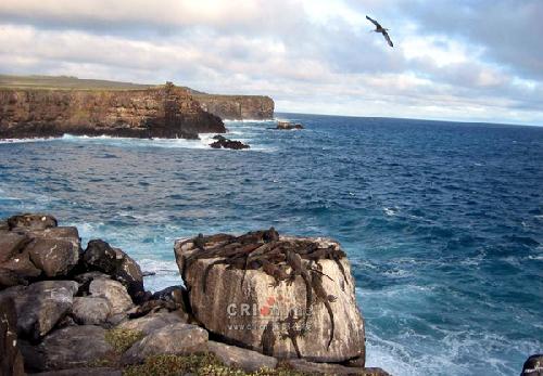 美阿留申群岛海域发生6.7级地震 未发海啸预警