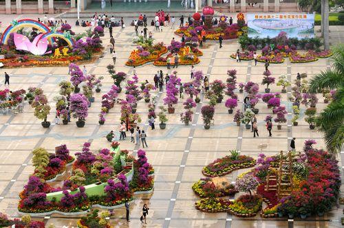 宝巾花展使市政广场成为一片宝巾花海,吸引了众多爱花市民前来观赏.