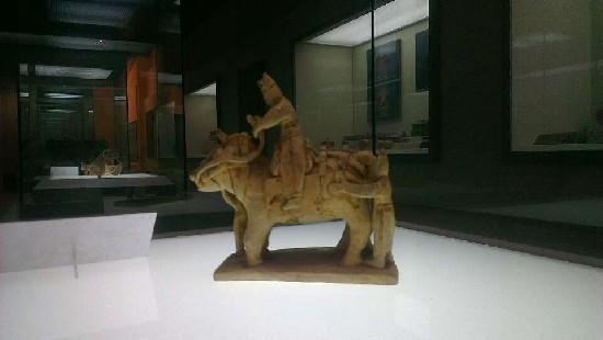 艺术形象动物的尾巴图