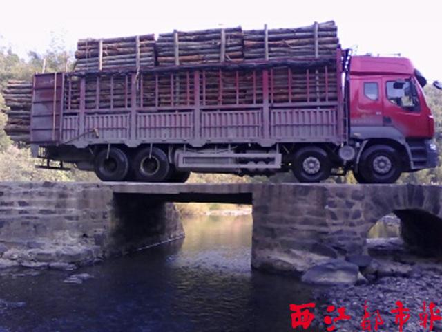 用重型车拉运木材很常见