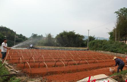 苍梧县狮寨镇助力生态乡村建设
