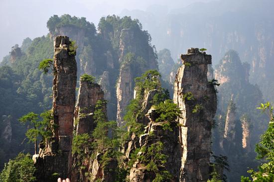 【天门山】 天门山位于张家界市南,距城区仅8公里。天门山因天门洞而得名。天门山主峰海拔1518.6米,平均海拔在1400米以上。天门山隆起开始于燕山运动,再经喜马拉雅山造山运动,再经风雨剥蚀,造就成为凌空独尊、举世罕见的喀斯特台型地貌。天门山山势高绝,陡险峻拔,景色雄奇壮丽,一年四季景象变幻万千。山顶保存着完整的原始次生林,植物资源丰富,有着很多国家保护的珍贵植物品种,更有珍稀罕见的原始高山珙桐群落。天门山山顶面积近2平方公里,森林覆盖率逾90%,其间古树参天,藤蔓缠绕,青苔遍布,石笋、石芽举步皆