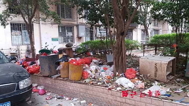 富祥花园小区垃圾无人清理?因收不上物业费暂停保洁