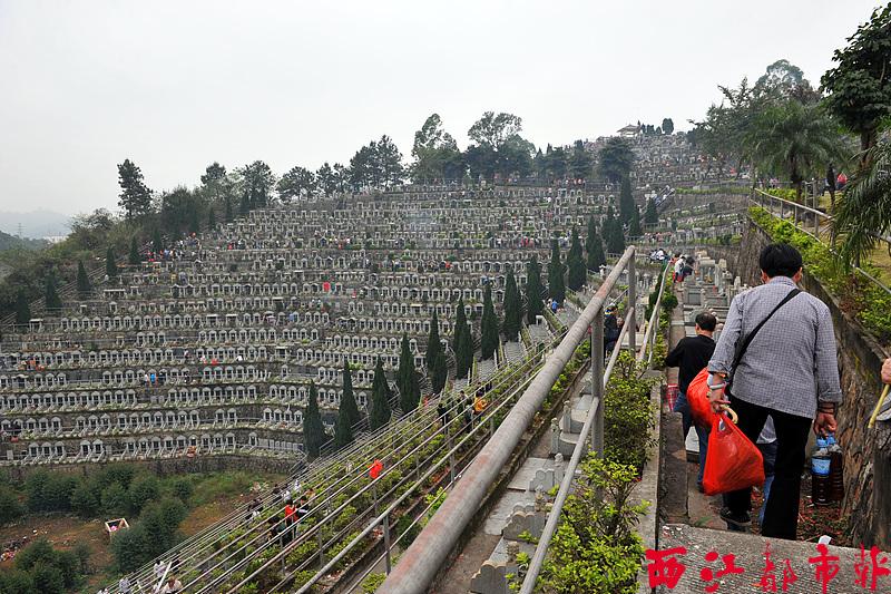 梧州市红豆社区_梧州逾八万人次前往两大墓园祭祀-广西新闻网
