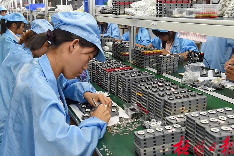 6月23日,在梧州工业园区广西天睿精工精密电子有限公司车间,工人在生产线上制作钟表机芯。 该公司专业从事精密石英钟表机芯的研发、生产制造和销售,产品供向欧洲、北美和东南亚等地的钟表厂家。今年2月,该公司在前海股权交易中心(深圳)登陆新四板,正式上市发展。孟亚西 徐楚湘 摄