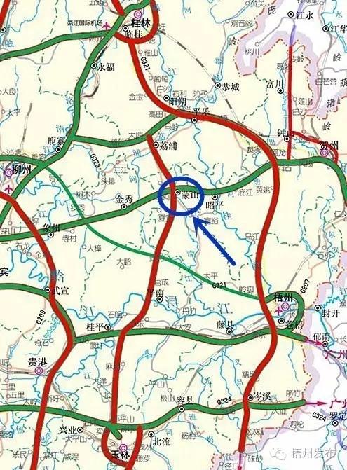 绿色横向为贺州至巴马高速公路,纵向红色的为荔浦至玉林高速公路.