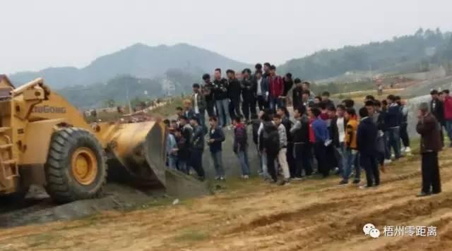 思良江休闲农业(核心)示范区集结了几百民众与黑势力图片