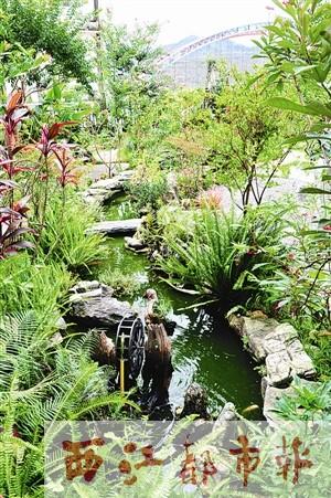 家庭小花园假山鱼池设计实景图